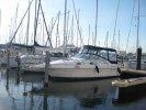 Sea ray 250 foto: 0