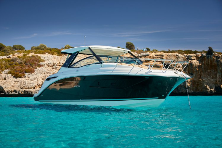 Sea Ray Sundancer 320 foto: 0