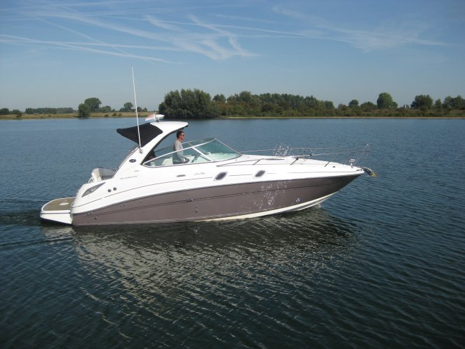 Sea Ray 305 Sundancer foto: 0