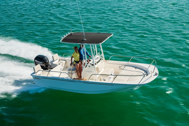 Boston Whaler 190 Montauk foto: 0