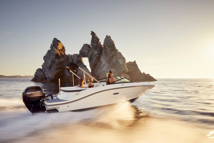 Sea Ray SPX 190 Outboard foto: 0