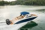 Sea Ray SDX 290 Outboard foto: 1