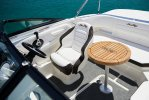Sea Ray SPX 190 Outboard foto: 3