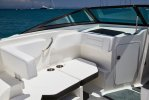 Sea Ray SPX 190 Outboard foto: 2