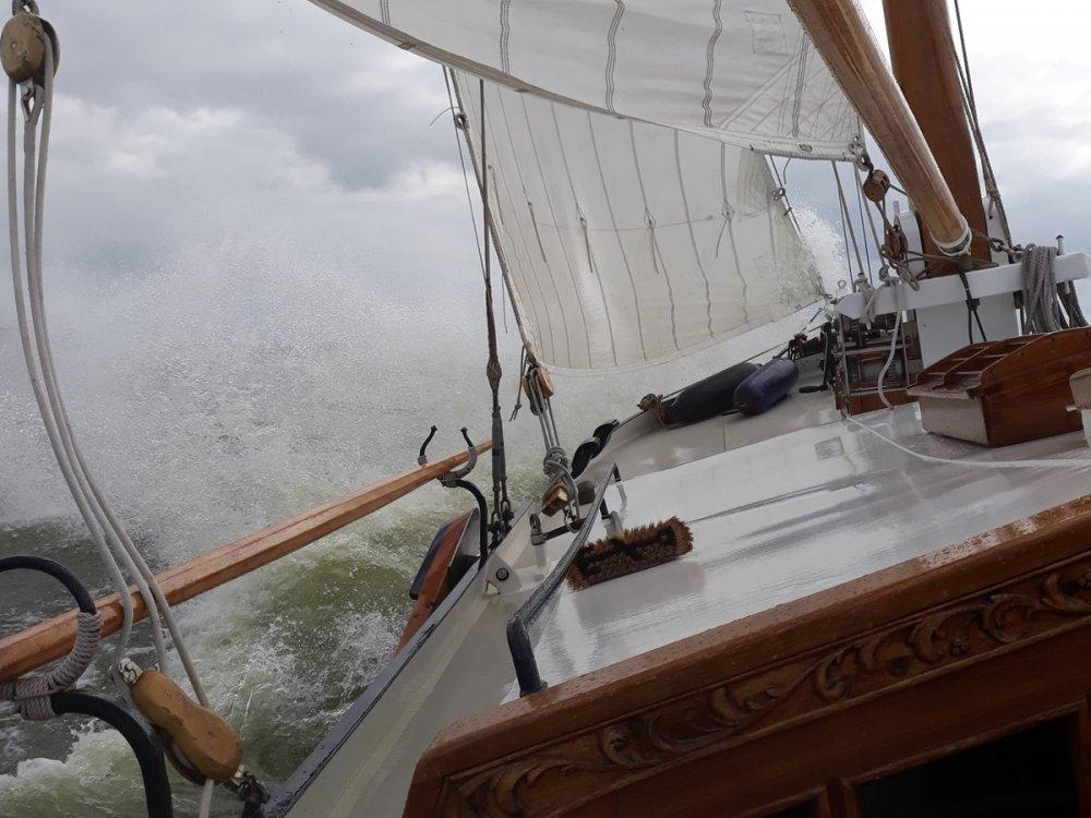 Boeieraak Jachtuitvoering foto: 10