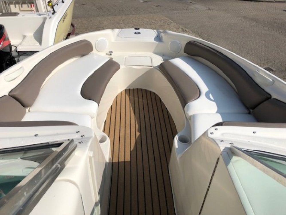 sea ray 240 sundeck foto: 8