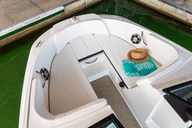 Sea Ray SPX 190 Outboard foto: 1