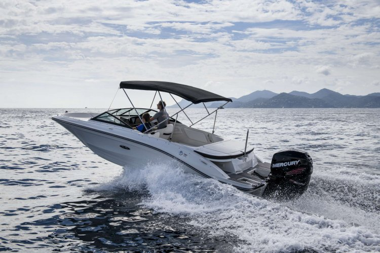 Sea Ray SPX 210 Outboard foto: 0
