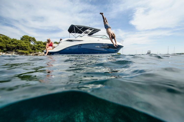Sea Ray Sundancer 290 foto: 1