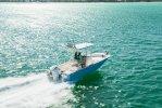 Boston Whaler 210 Montauk foto: 1
