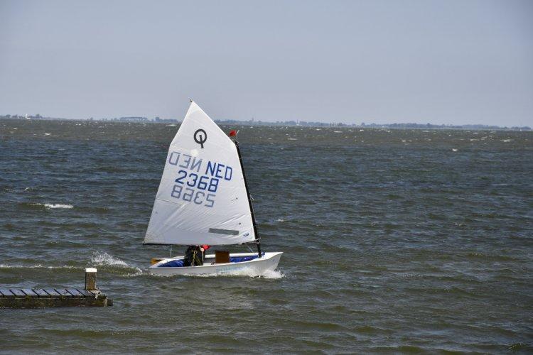 Optimist Van Wettum foto: 1