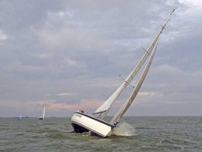 Oyster 41 (ex IOR Racer) foto: 1