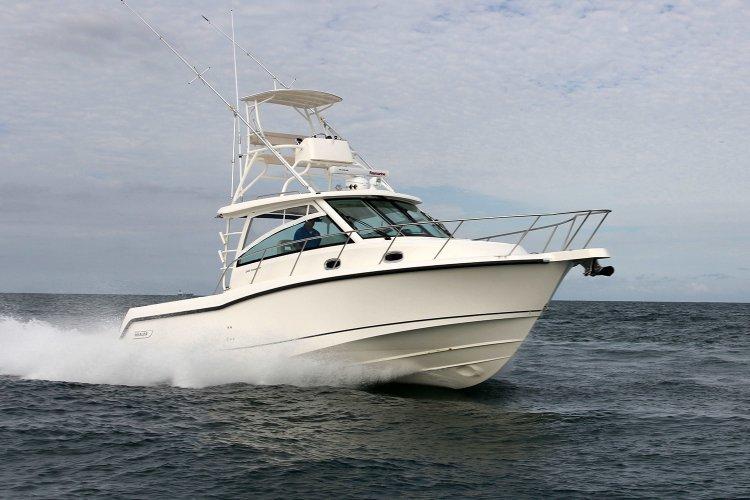 Boston Whaler 345 Conquest foto: 0