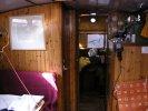 Hoogaars Arnemuiden stamboek 428 foto: 3