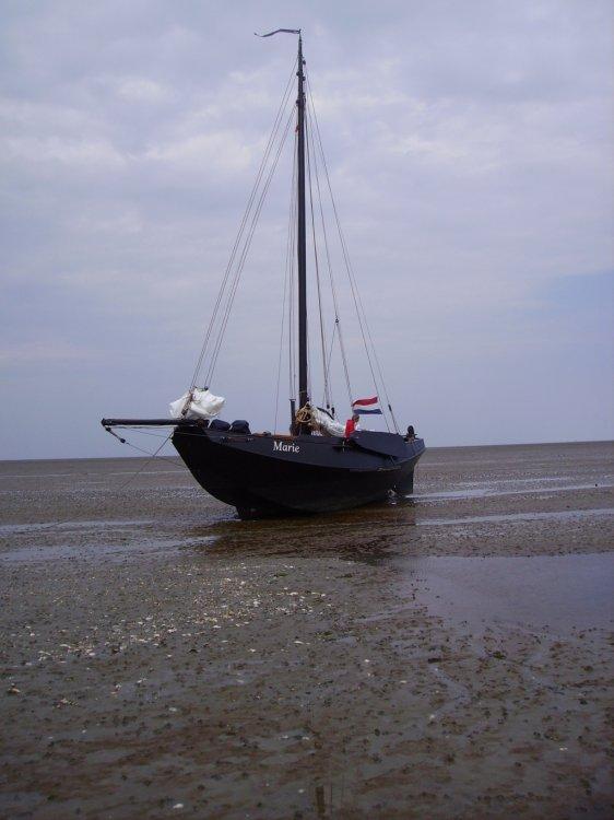 Deining vissermanschouw zeeschouw foto: 3