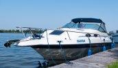 Sea Ray 250 Express Cruiser foto: 0