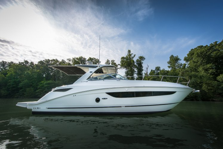 Sea Ray Sundancer 350 foto: 0