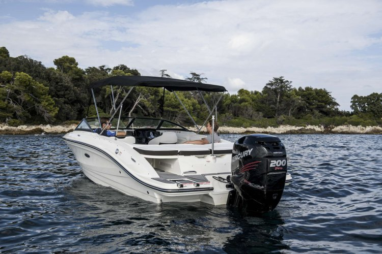 Sea Ray SPX 210 Outboard foto: 1