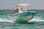 Boston Whaler 270 Dauntless foto: 0
