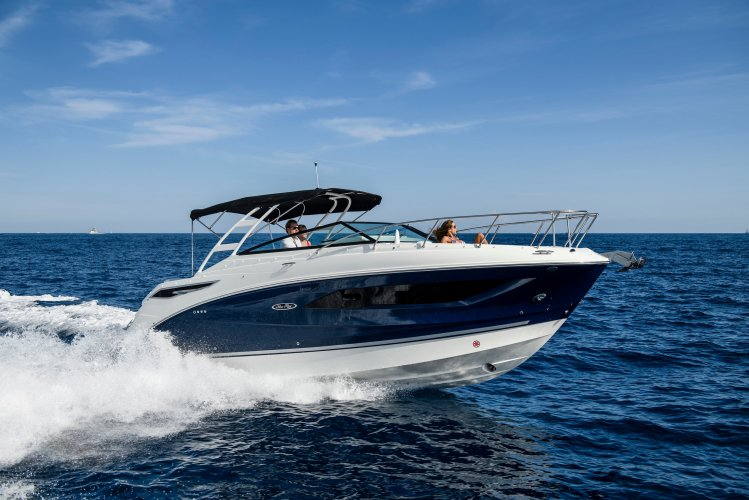 Sea Ray Sundancer 290 foto: 0