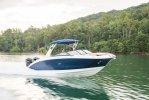 Sea Ray SDX 290 Outboard foto: 0