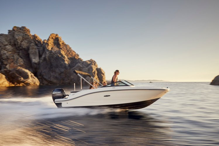Sea Ray SPX 190 Outboard foto: 1